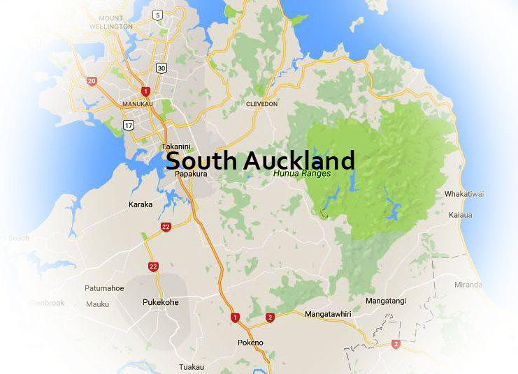 Looking At Renovating In South East Auckland?